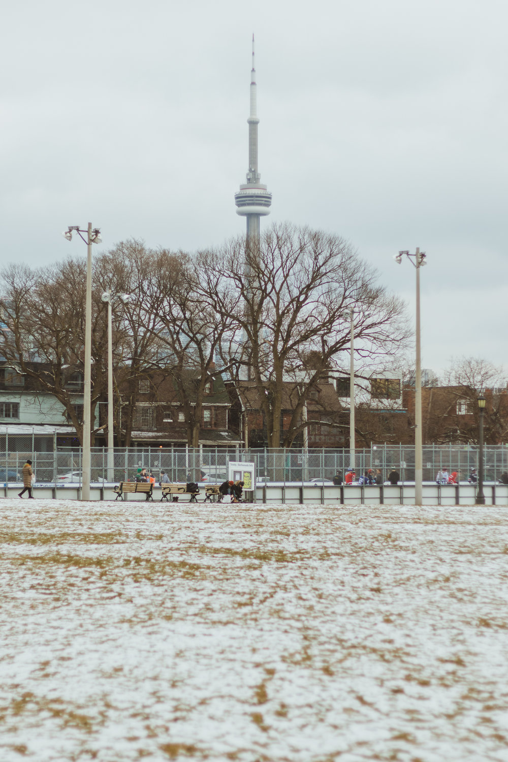 quiet park on a winter afternoon in Toronto