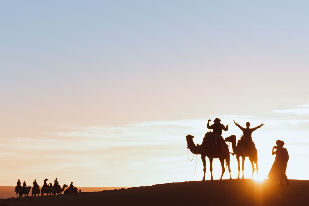 silhouette of travellers on camels at sunrise in the sahara
