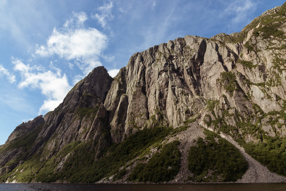 Newfoundland fiord from a boat