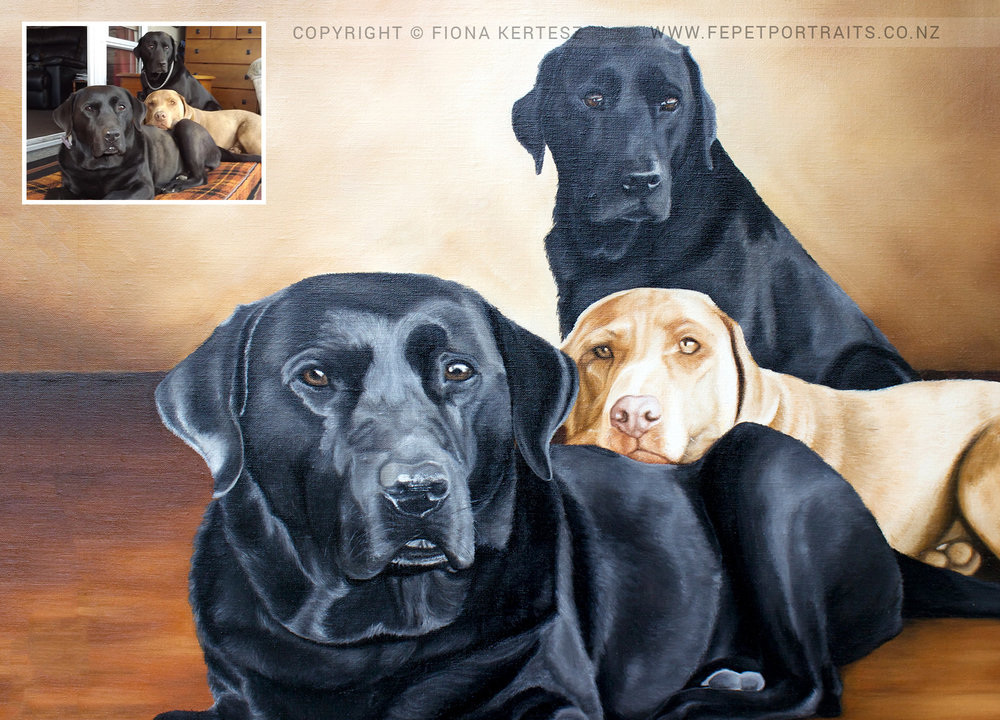 Sam, Coruba and Buca, Oil on Linen, 20 x 24 inch