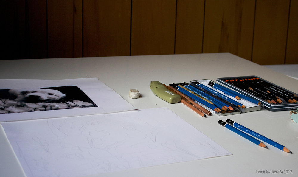 pencil-1.jpg