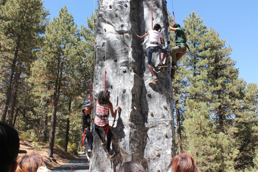 Climbing Wall -