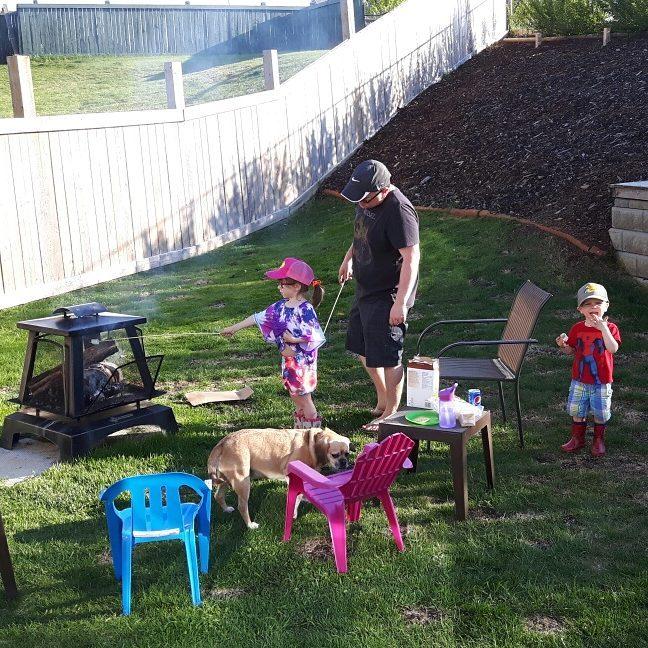 Backyard Always Busy