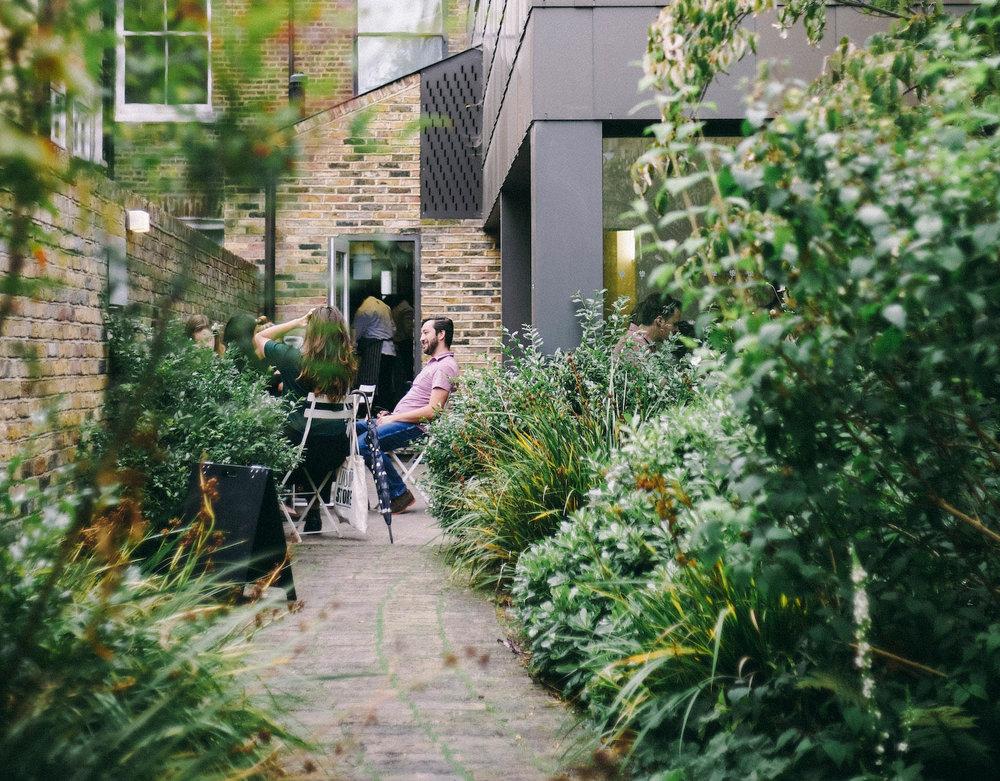 green_backyard.jpg