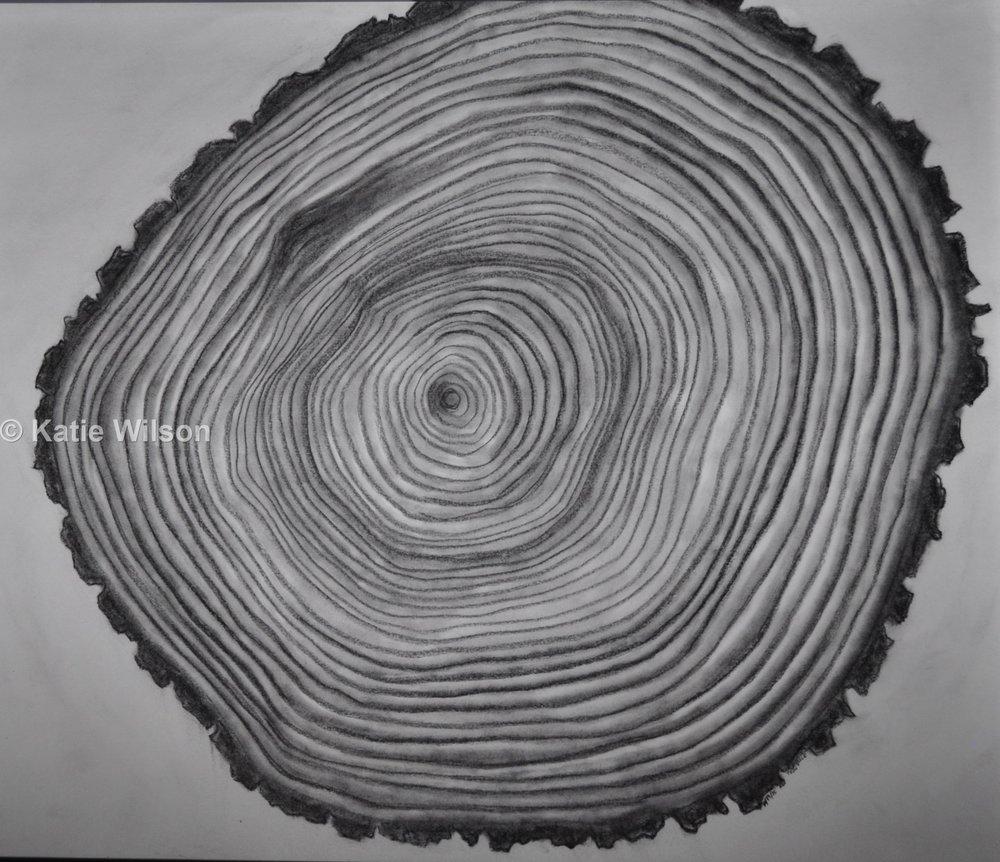 """Thin Slice, 2015  16"""" diameter"""