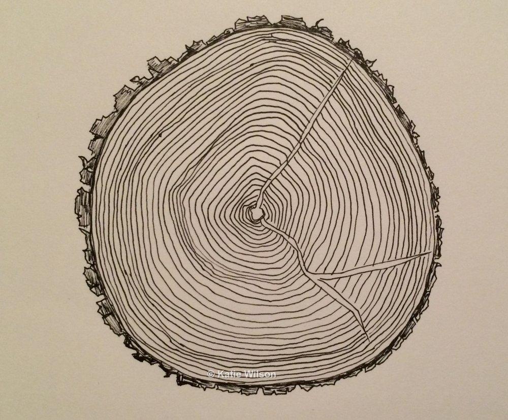 "Checking, 2015  4.5"" diameter"