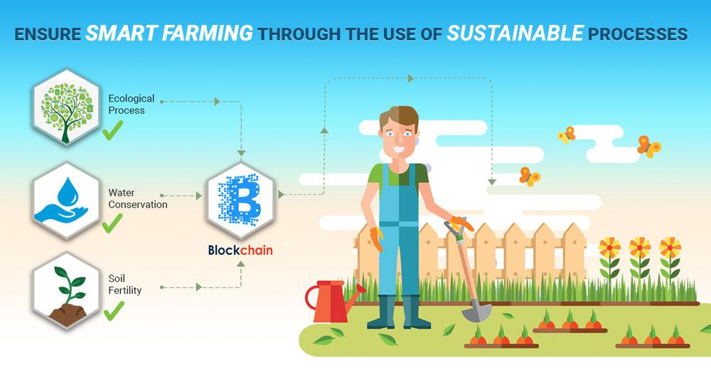 Sustainable Farming Principles_c1.jpg
