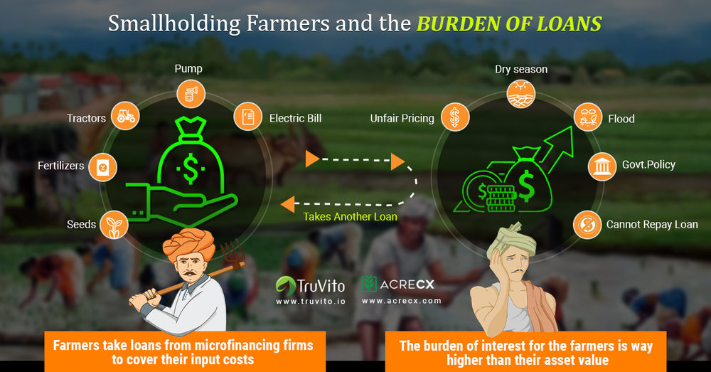 Smallholding Farmers_d.jpg