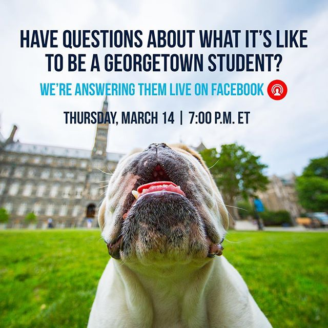 Hey Class if 2023! Want to learn more about what your next 4 years on the Hilltop could look like? We've got you covered! Come check out the GAAP Facebook Live on Thursday, happening live in the Class of 2023 - Official GAAP Group on Facebook!