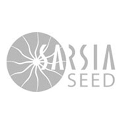 Sarsia Seed.jpg