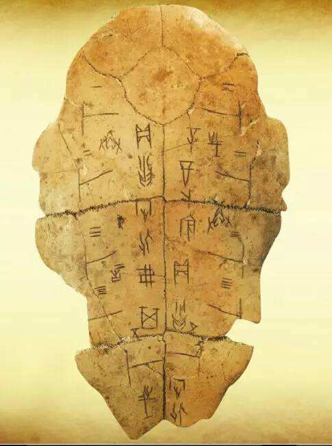 An example of oracle bone script, inscribed on a tortoise shell.