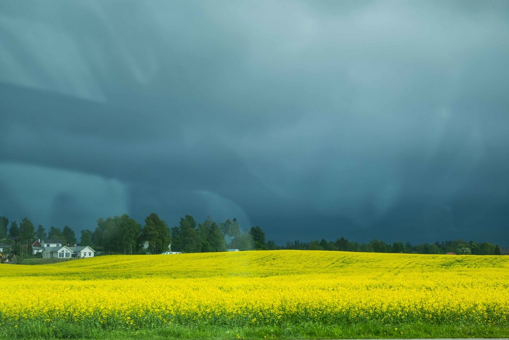 A storm brewing in the South of Norway. Photo: Daniel Novello