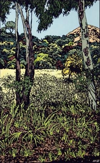 In Girraween National Park