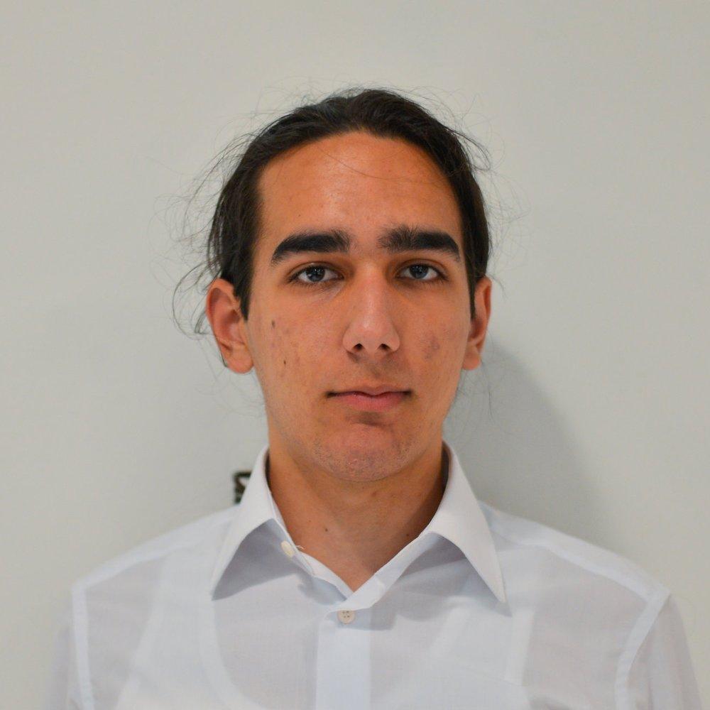 Stefan Manolescu