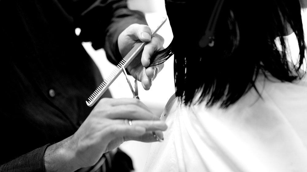 Cutting & Styling -