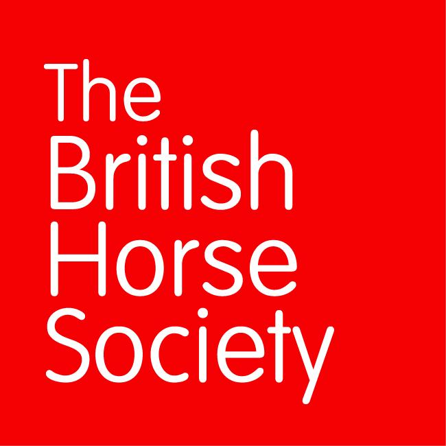 BHS logo 1.jpg