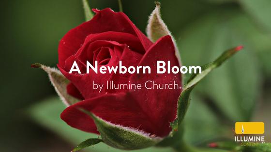Worship Blog Title (8).png