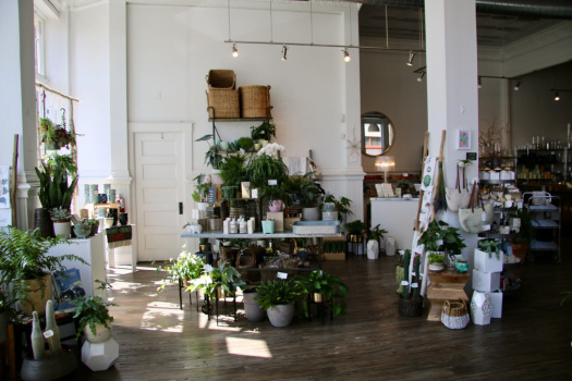 Eden Floral Boutique: A Cincinnati Oasis - The {House} Plant Momma | August 2017