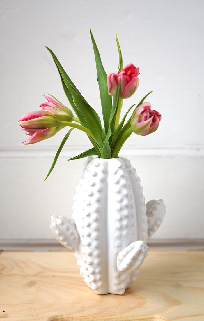 v cactus 1.jpg