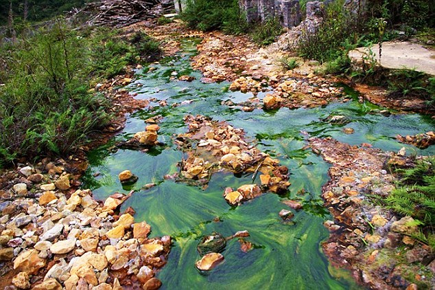 Bioremediation-537x358.jpg
