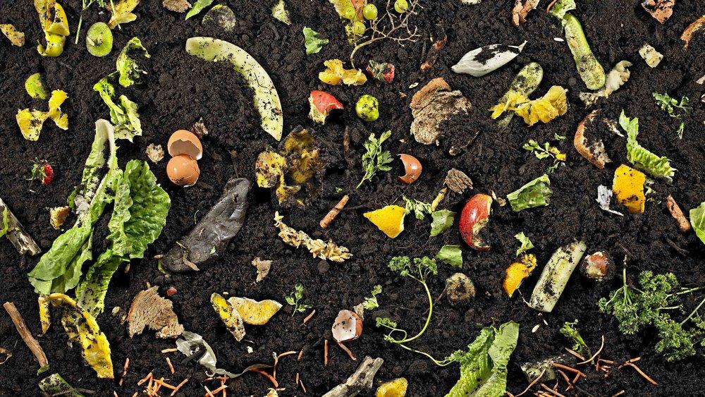 quartz-basf-compost-edit6.jpg