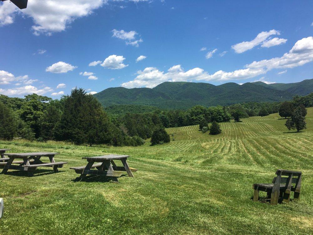 virginia-wineries-view.jpg