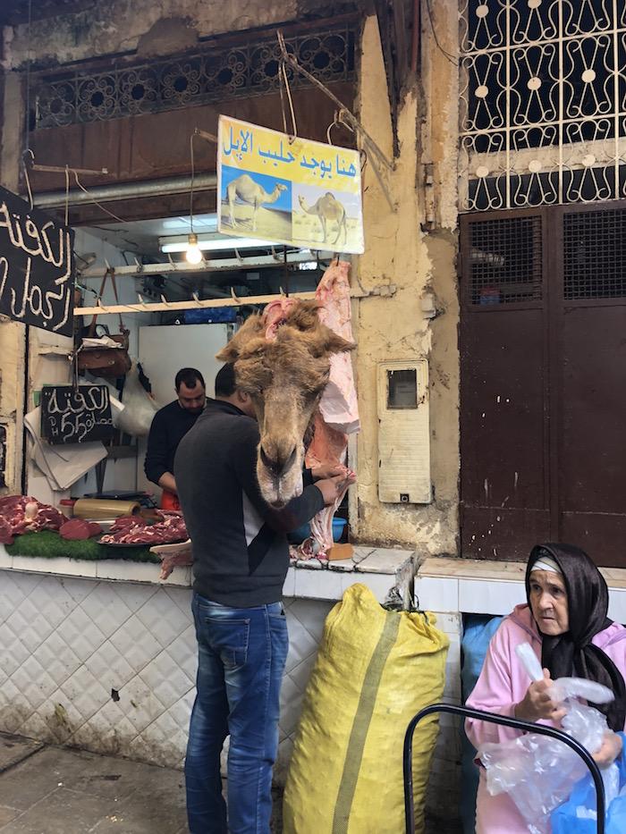 camel vendor in fex medina morocco.jpg