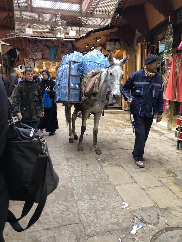donkey delivering water in fez medina.jpg