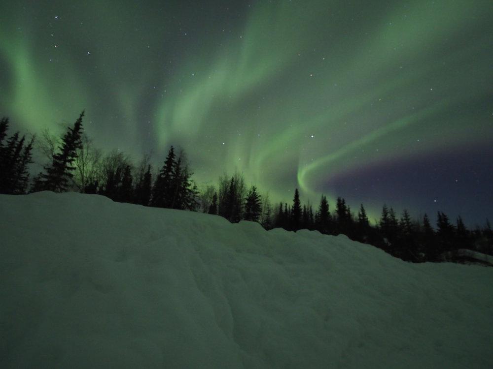 Northern Lights near Fairbanks