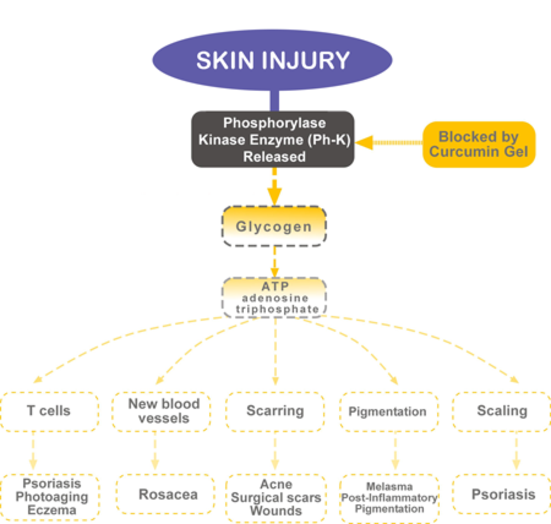 PsoriaGoldPathway.png