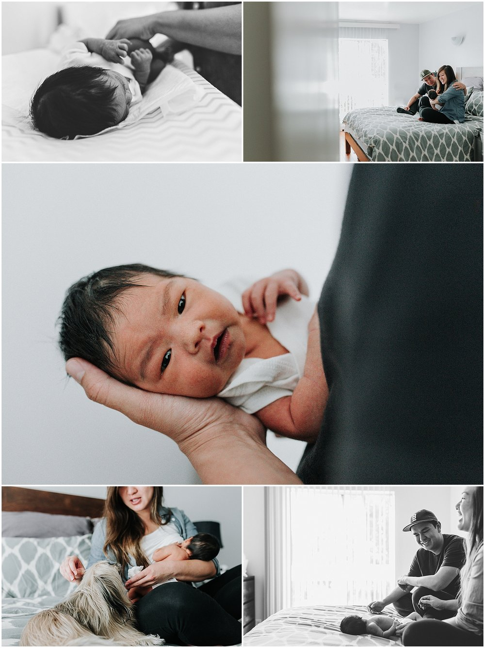 A few from Kiara's newborn session.
