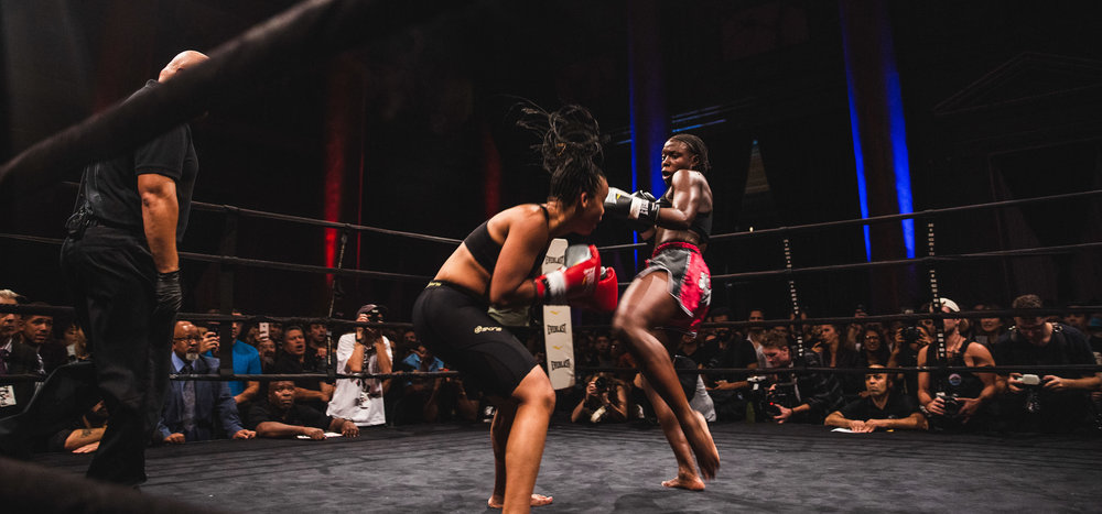 33_Fight Night Vol 2_svk.jpg
