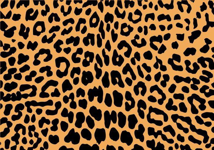 free-leopard-print-vector.jpg