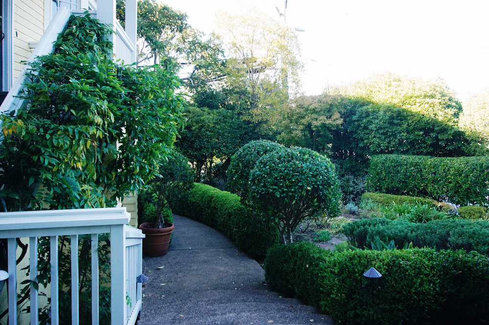 laurel-landscaping-hedges.jpg