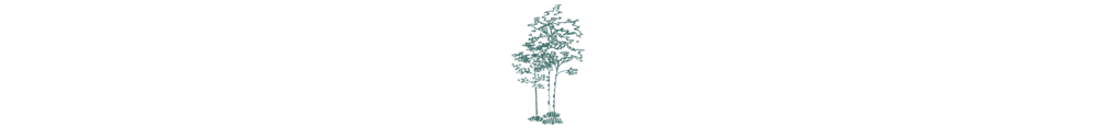 trees-two-color.png