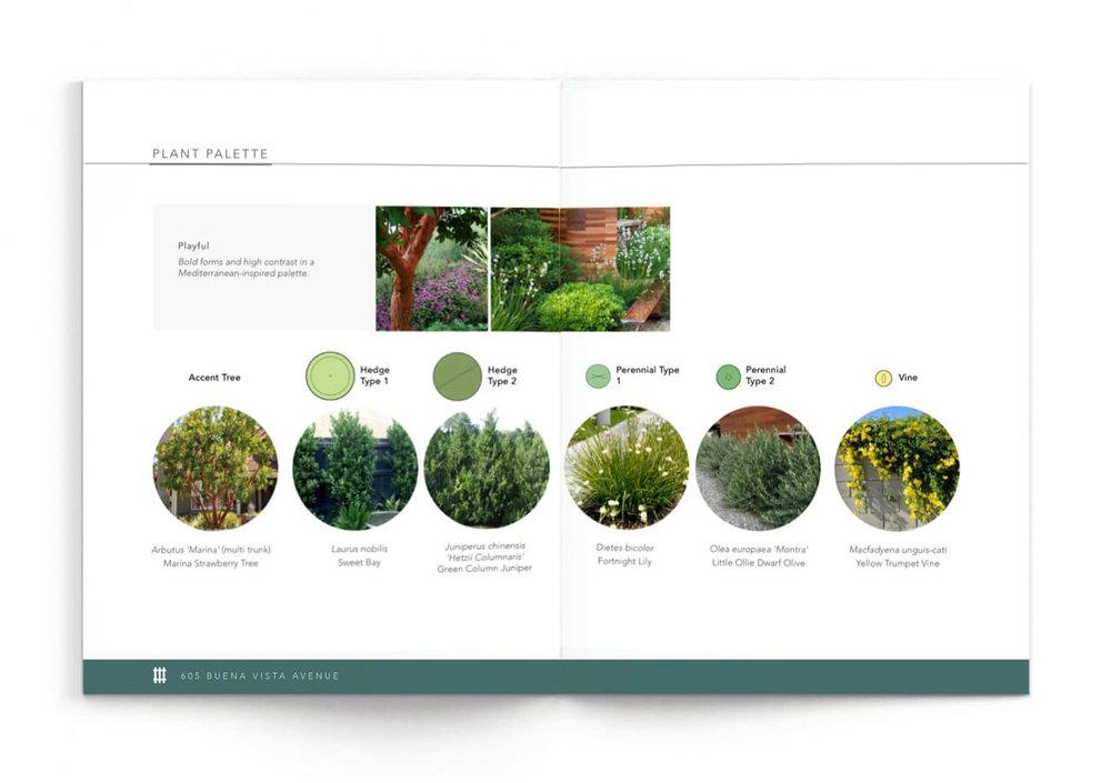 vision-kit-plant-palette 2.jpg