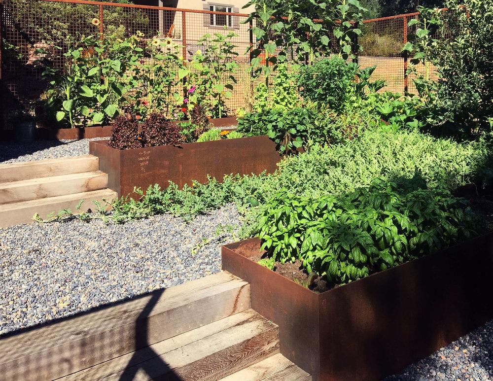 LChambers_ProjectBook_garden.jpg