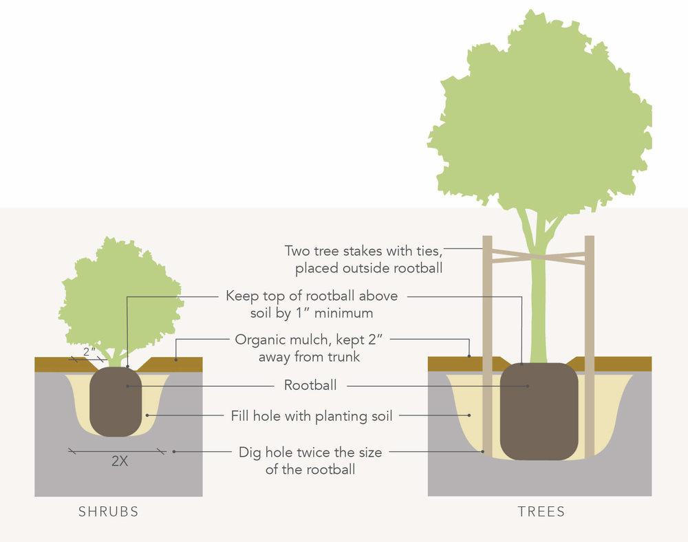 YardKit-Installation-Guide-Tree-Shrub-Diagram.jpg