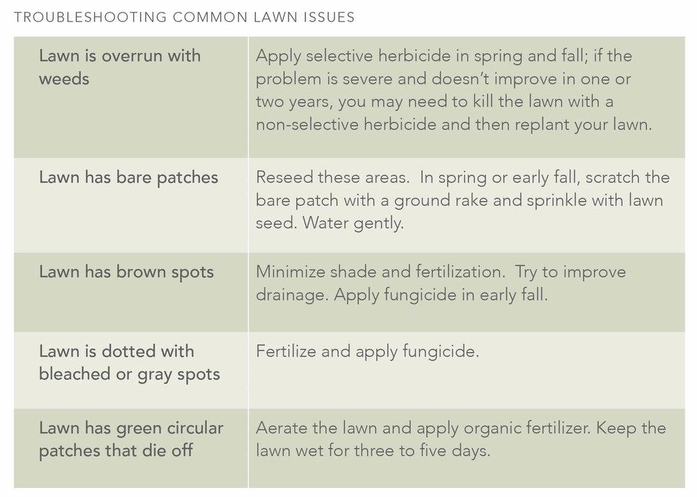 YardKit-Maintenance-Guide-Lawn.jpg
