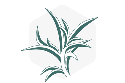 icon-plant-process-plants-white.png