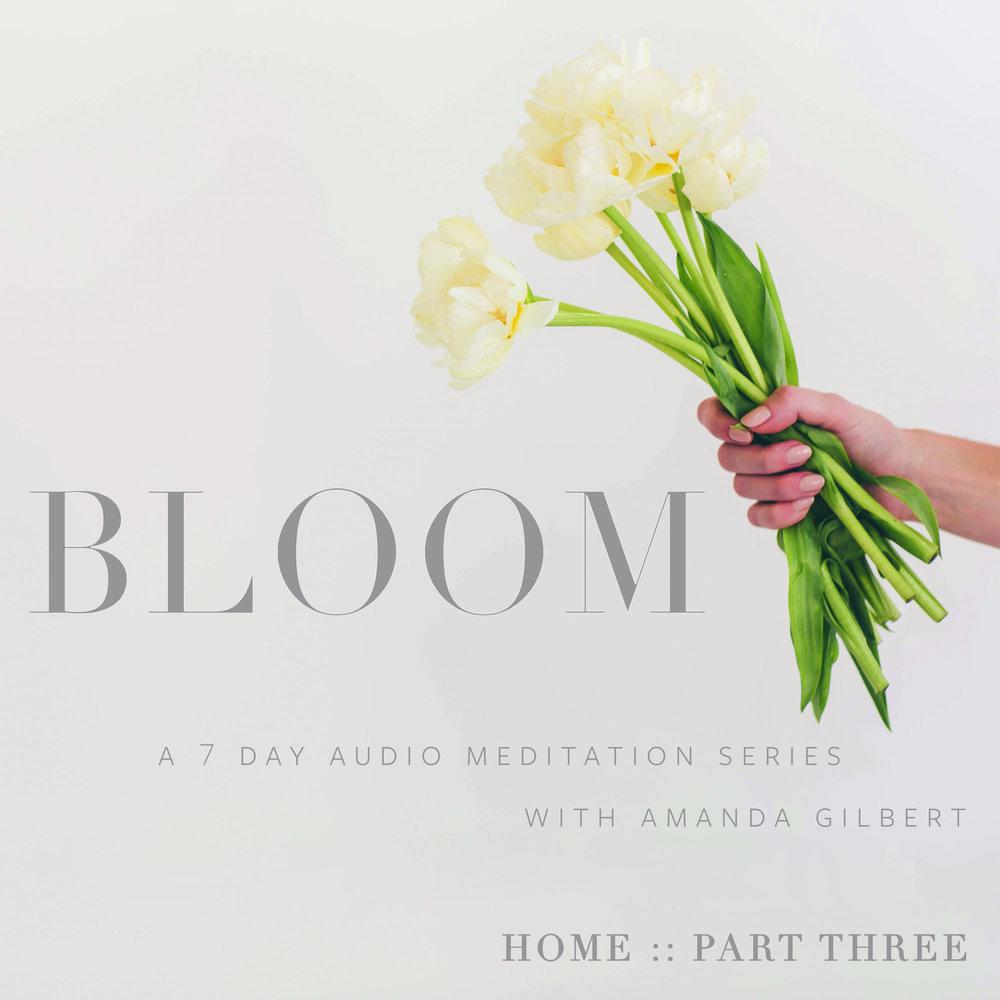 bloom-cover.jpg