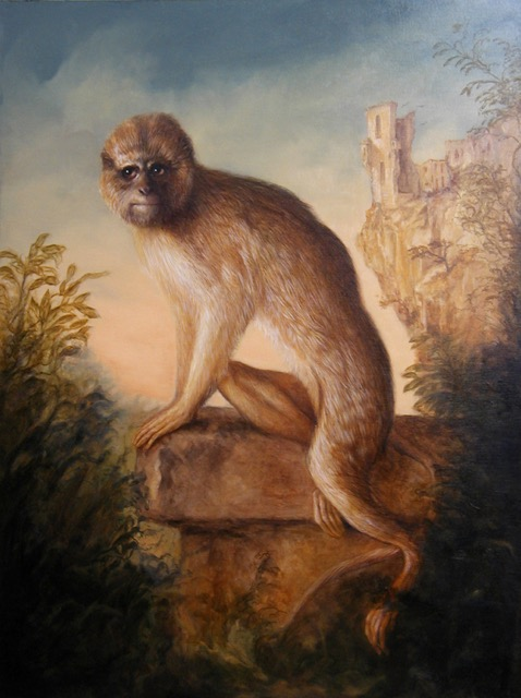 Primate Portrait by Jennifer Chapman