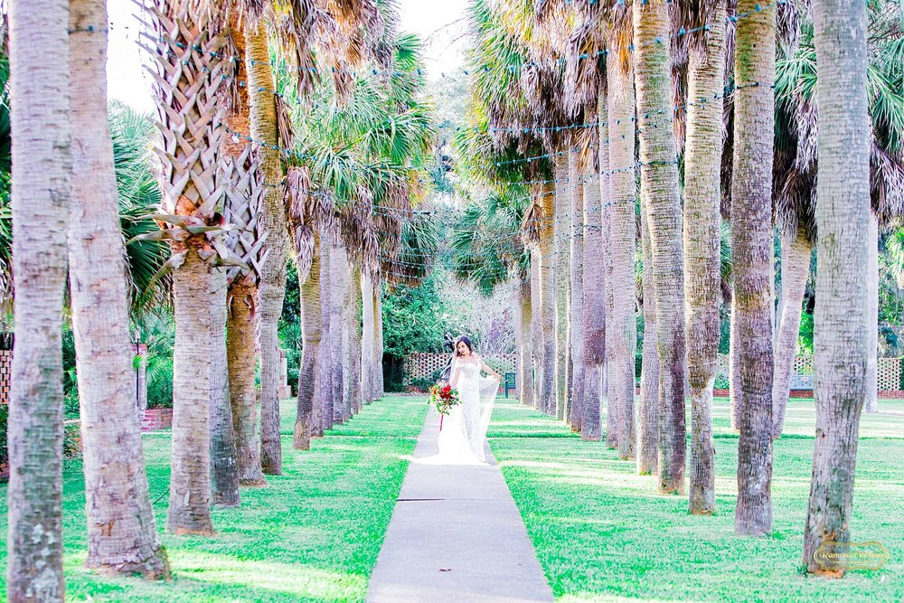 bride in wedding dress walking on path of palm trees at brookgreen gardens during bridal session with ramona nicolae photography at brookgreen gardens -5.jpg