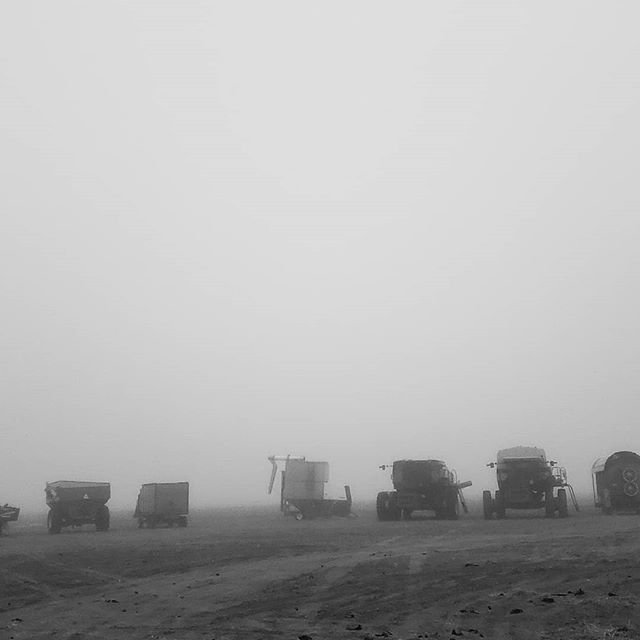 Our 10% chance of moisture definitely arrived 🌬  #farmlife #fog #lookliketoys #coloradoweather #iswearthereisafieldbackthere