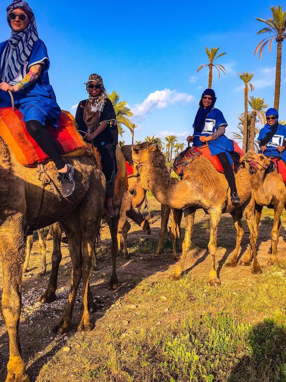 Morocco - FEBRUARY 16 - 23, 2019