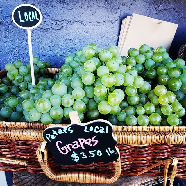 Fall is the time for local grapes! Thankyou Petar! #yyjfarmers #yyjeats #yyjfoodie #buybc #supportlocalfarms