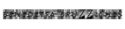 benedetta-bruzziches_logo.png