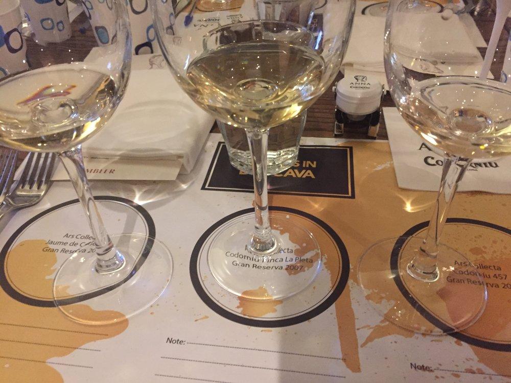 cava-wines-codorniu.JPG