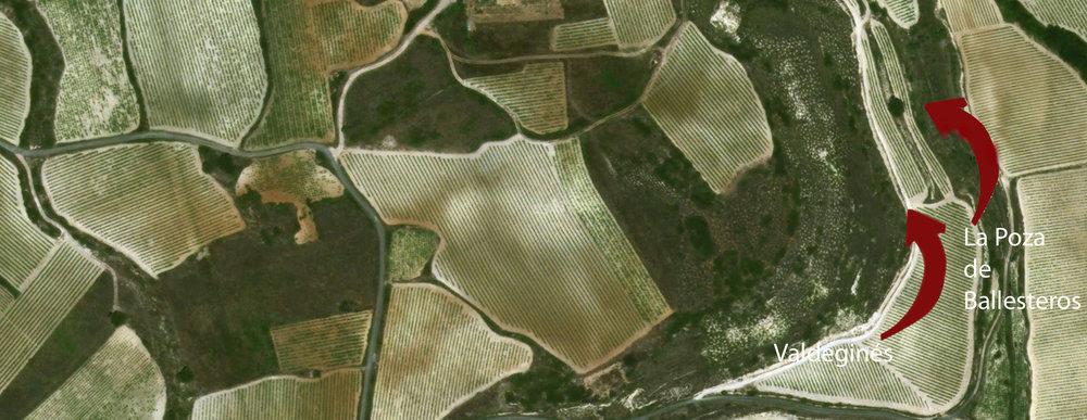 Artadi-Vineyards.jpg