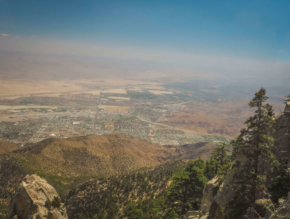 Take the Palm Springs Aerial Tramway up to Mount San Jacinto State Park,the best outdoor day trip for your Palm Springs vacation. Overlooking the Palm Springs, it sits on top of a nearby mountain and allows not only for great views and hiking, but an escape from the desert heat. #palmsprings #hiking #mountain